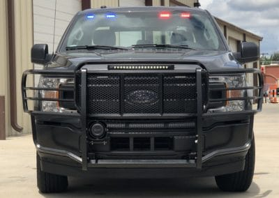 F-150 Grille Guard